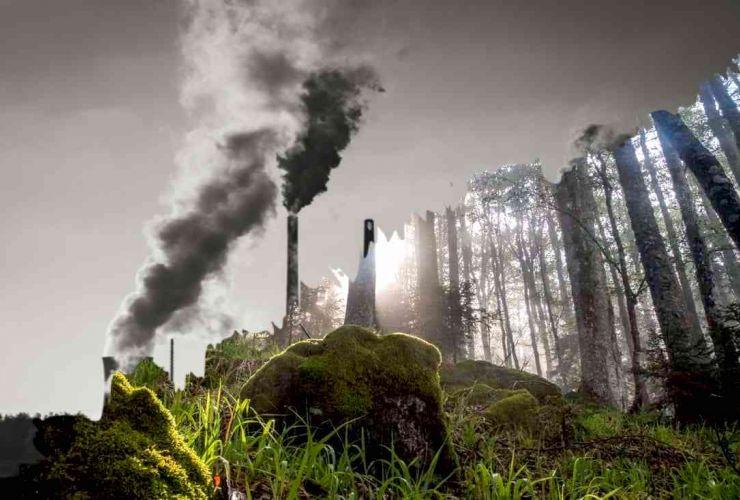 کمکردن کربن در کالیفرنیا